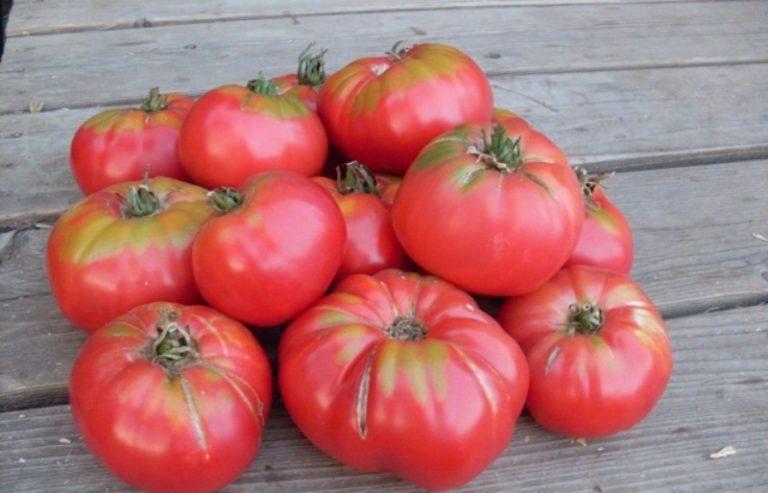 Употреблять в пищу такие плоды можно, а единственным их недостатком служит относительно небольшой срок хранения