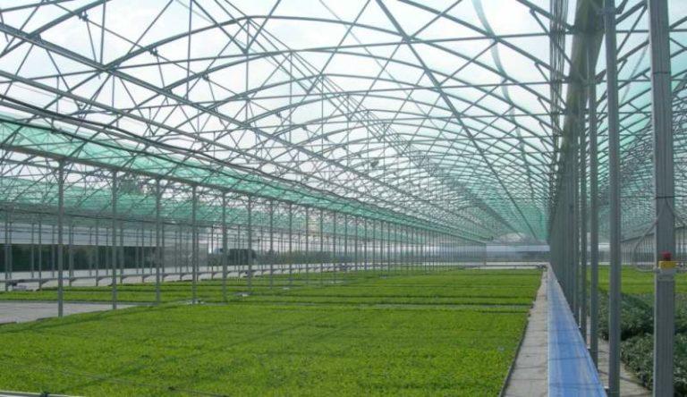 Промышленные теплицы, как правило, различают по их формам, размерам и сезонности пользования