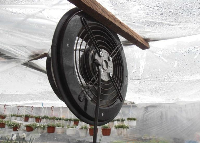 Роль принудительной вентиляции для теплиц заключается в том, чтобы осуществлять перемещение и замену воздушных масс, вызванное искусственно