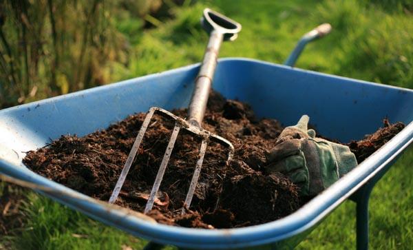 Удобрять почву следует в самом начале весны для лучшего роста и развития растений