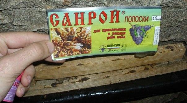 Ловушки для медоносных насекомых можно приобрести в магазинах