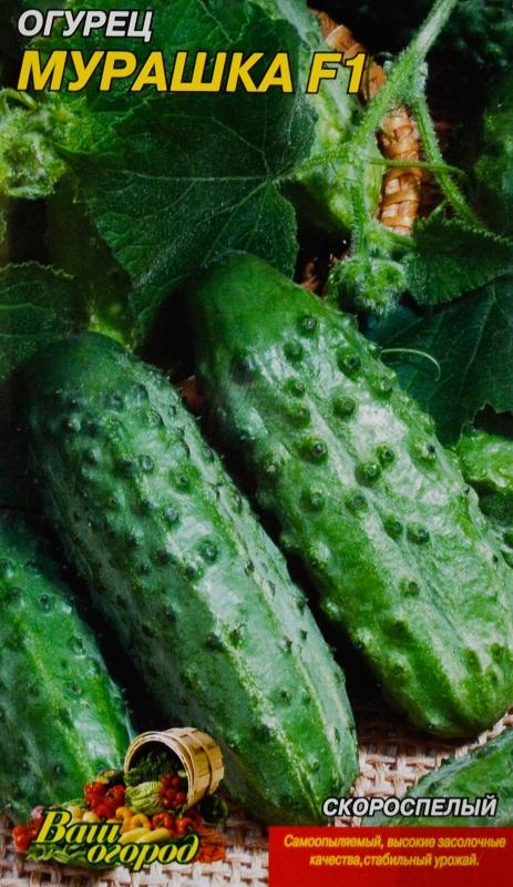 Лучшие семена огурцов