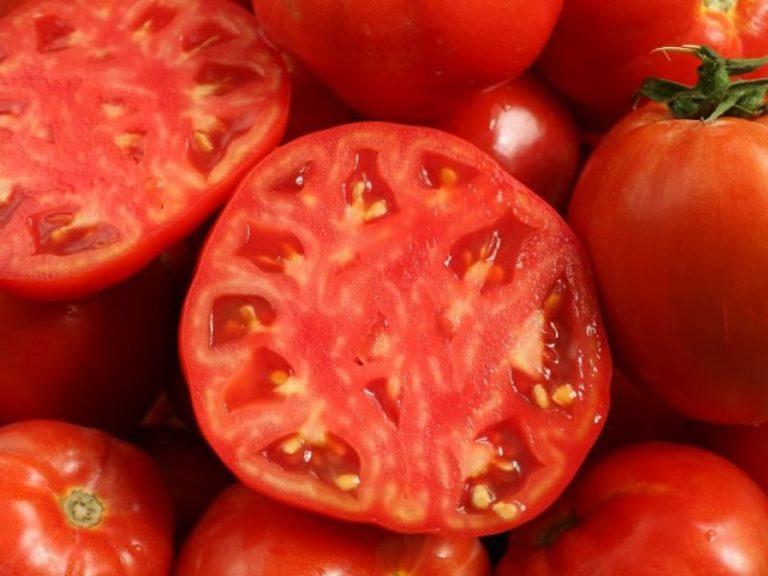 Томаты круглые и сочные. Средний вес плода – около 200 г