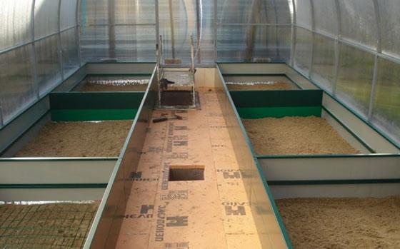 Можно пол не заливать бетоном, а по краям теплицы сделать бордюр, чтобы почва не разбрызгивалась во время поливки по окнам