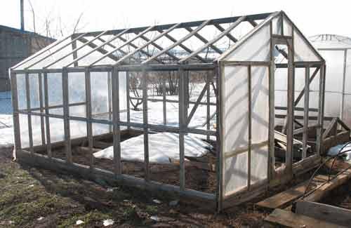 Парник из старых оконных рам можно изготавливать, не используя стекло, а заменив его пленкой