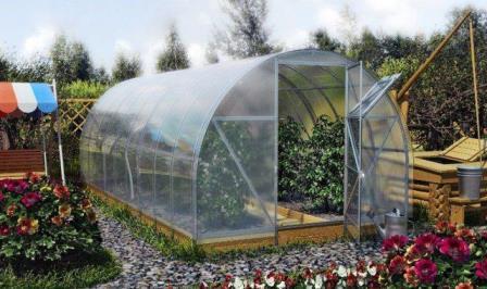 Если вы любите выращивать растения на участках и хотите делать это даже в холодное время года, постройте теплицы из поликарбоната