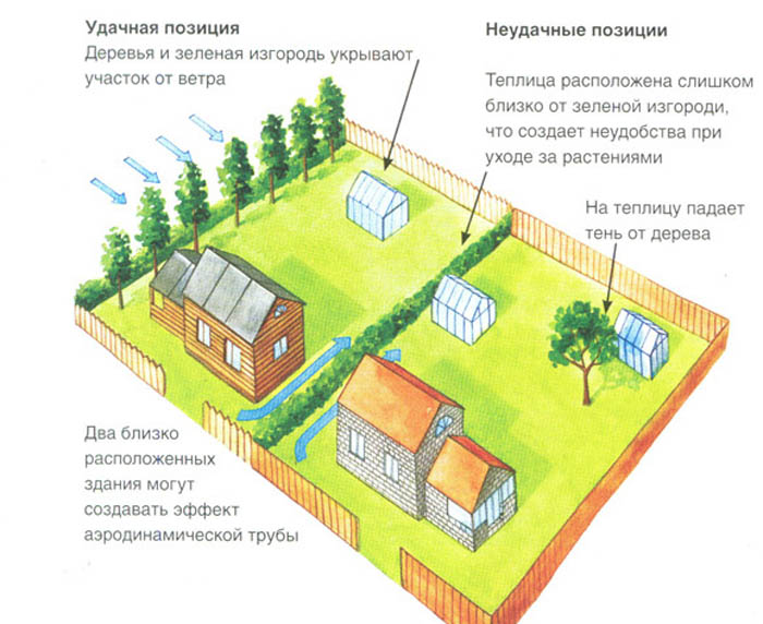 При ориентации строения относительно сторон света садовод обязательно учитывает рядом находящиеся постройки и деревья