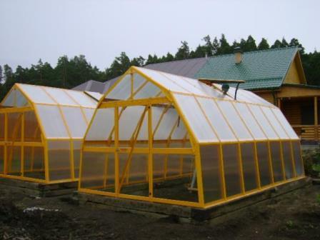 Для того чтобы иметь возможность вырастить хорошие плодоносные растения, теплицы Урала должны быть очень качественными