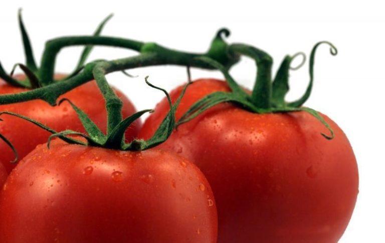 Эти томаты отлично подходят для приготовления витаминных салатов и соков