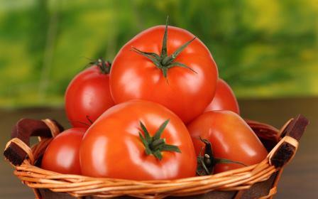 Спелые томаты в мае в наших климатических условиях можно получить только в отапливаемой теплице