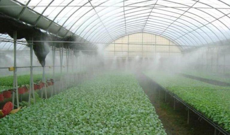 Туманообразователи для теплиц своими руками