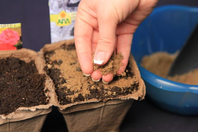 На растущую луну осуществляется посев семян