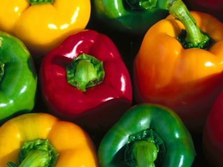 Перец является одним из наиболее популярных окультуренных овощей в мире