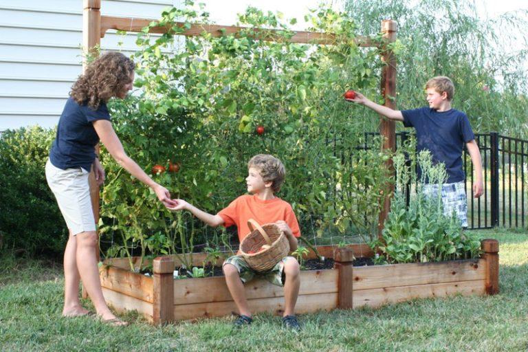 Такой метод агротехники объединяет воедино принципы органического земледелия и возможность придать своему участку эстетически привлекательный внешний вид