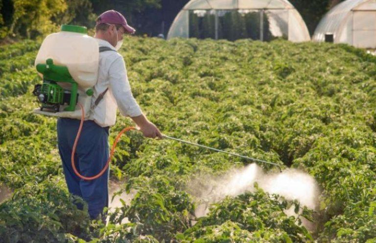 Внесение внекорневых удобрений используется как дополнительный метод обеспечения растений необходимыми минералами и микроэлементами