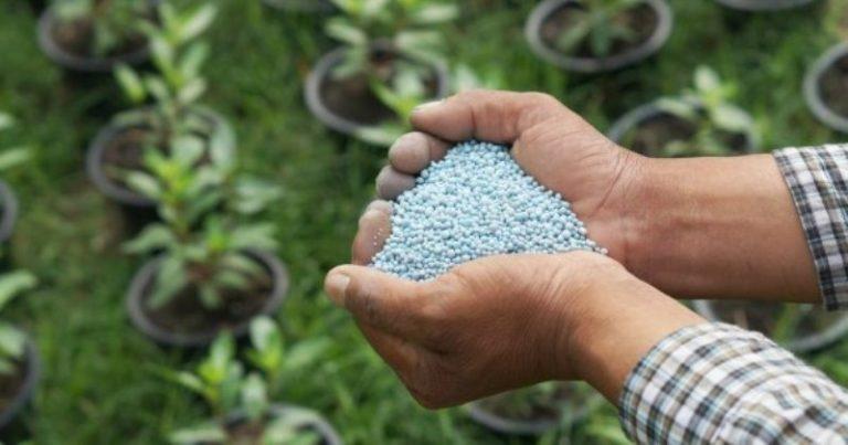 Для опрыскивания необходимо приготовить 0,5-1% раствор мочевины - развести 50-100 г средства в 10 л воды