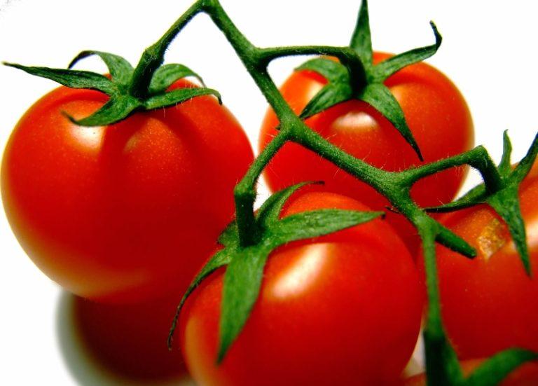 Отечественные селекционеры предлагают для выращивания на грядках или в небольших пленочных тепличках