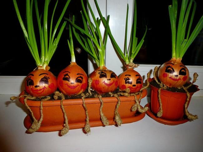 Выращивать зеленый лук не только полезно, но и удобно