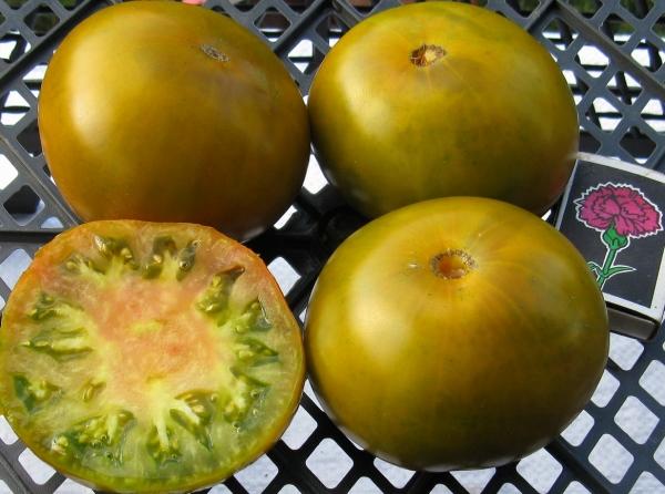 помидоры болото отзывы с фото