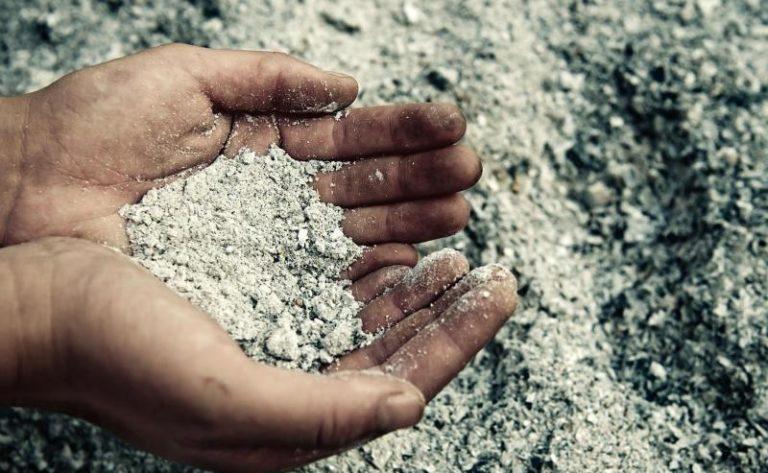 Внесение золы в почву создает благоприятные условия для полезных микроорганизмов