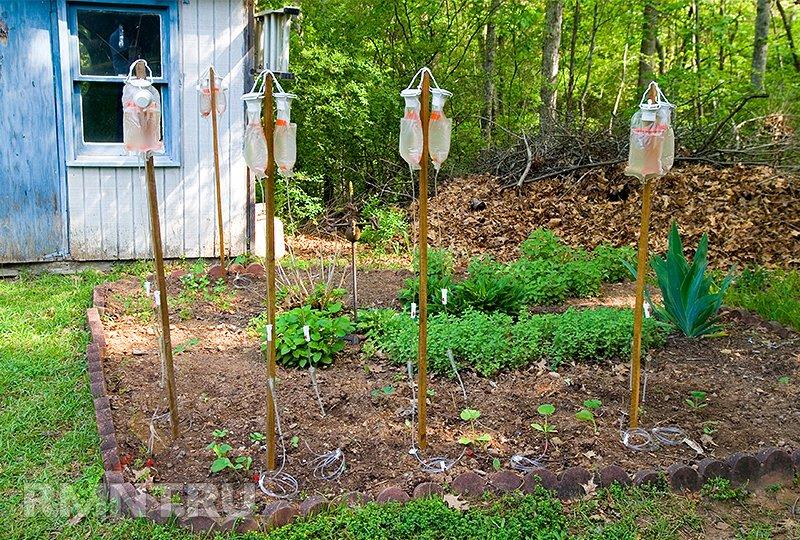Как самому сделать капельный полив в огороде